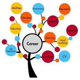Information technology skills for resume